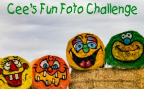 Cees Fun Foto Challenge
