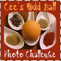 022714 Odd Ball