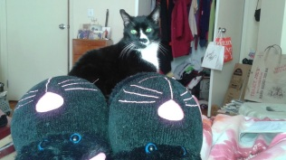 Shoes_CatSlippers
