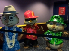 Cool Chipmunks