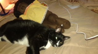 Sylvester & Buddy