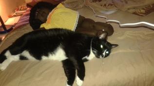 Sylvester & Friend
