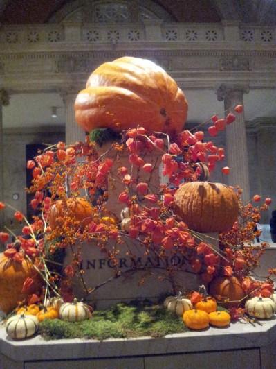 NYC Museum Pumpkin Patch