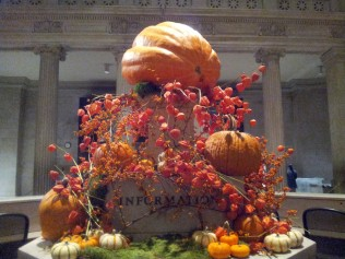 Museum Pumpkin Patch