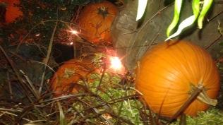 lit-pumpkins