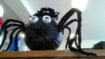 Black Spider Pumpkin