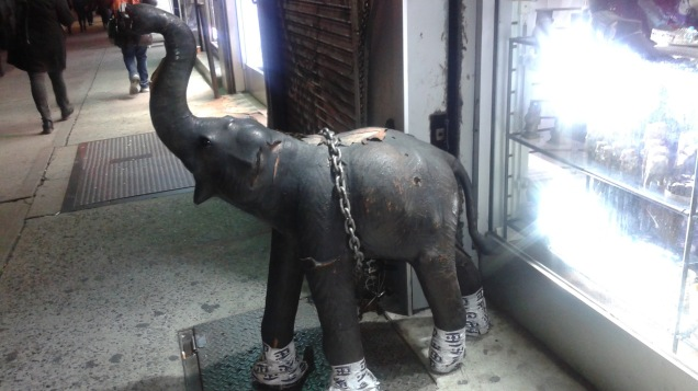 punctured1_pachyderm2