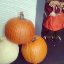 Tre Pumpkins